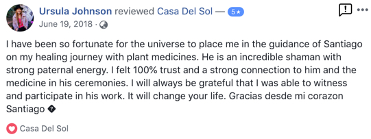 fb review - Ursula Johnson